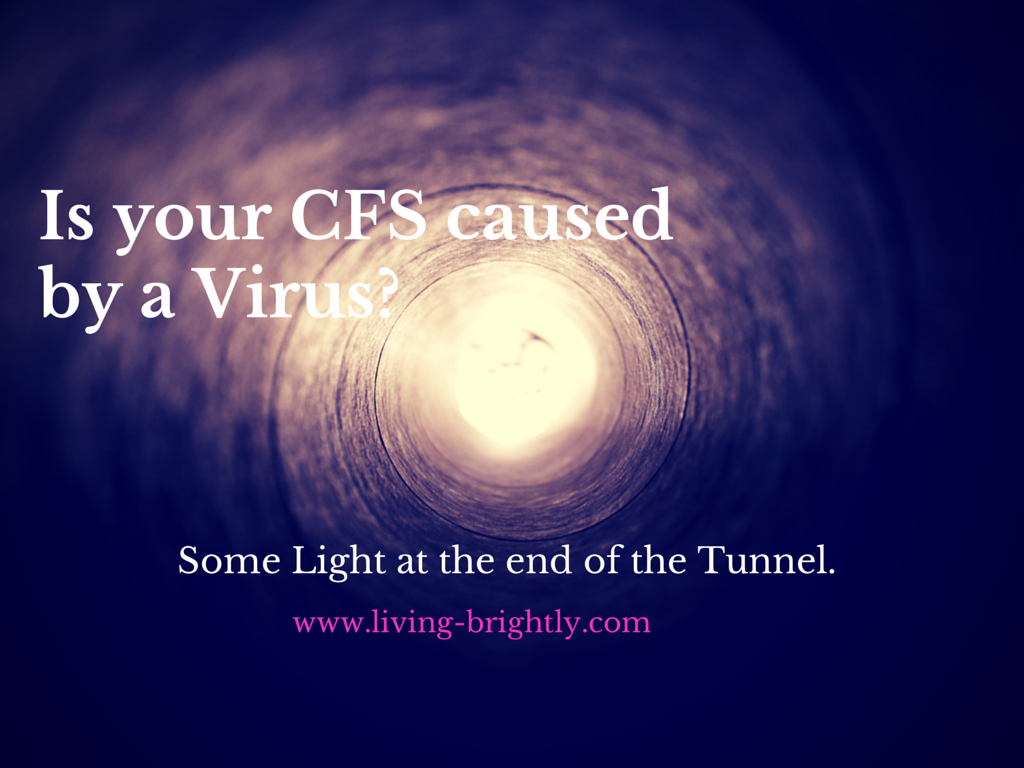 Is CFS caused by Parvo Virus?